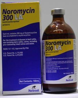 Thuốc Trị Khò Khè Noromycin 10ml